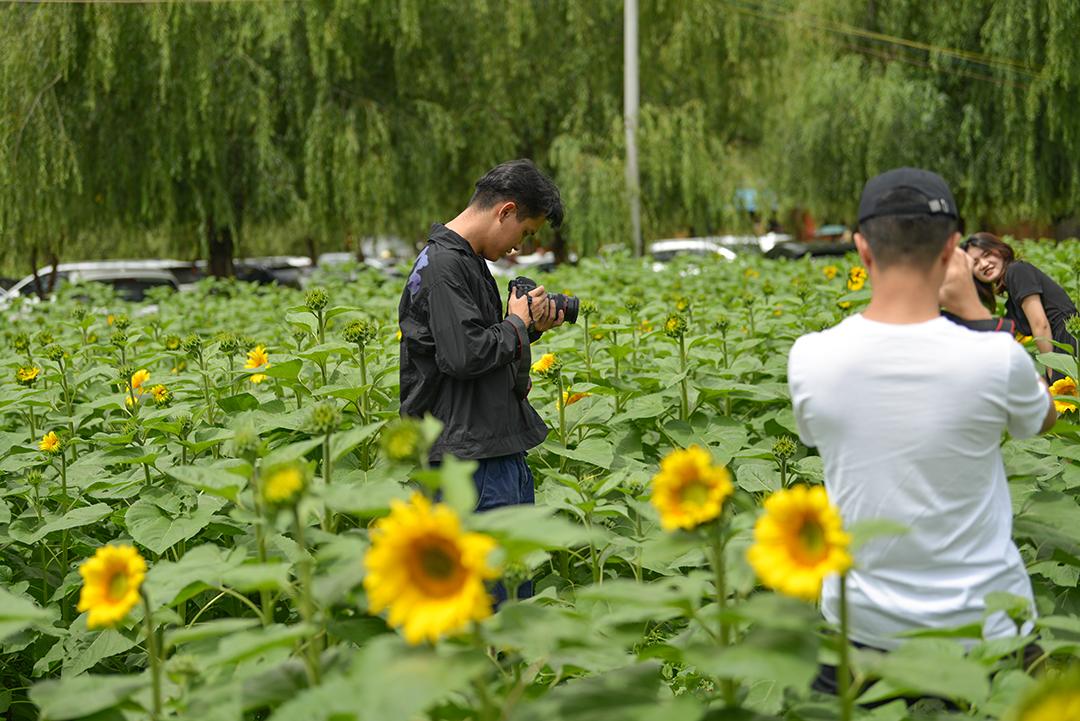 2021年7月18号昆明摄影培训学校户外拍摄花絮 专业知识 摄影培训 外拍活动  第2张